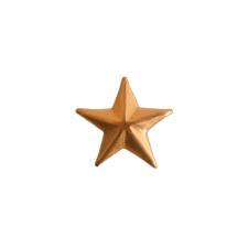 Metal Embellishment Mini Star-Brass 1