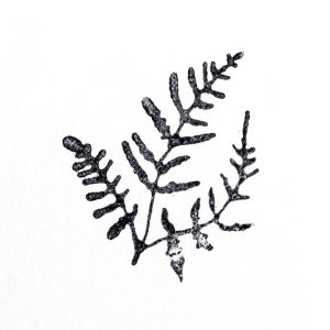Buy & Try Technique Stamp Large Fern