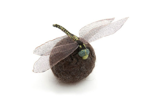 dragonfly-570